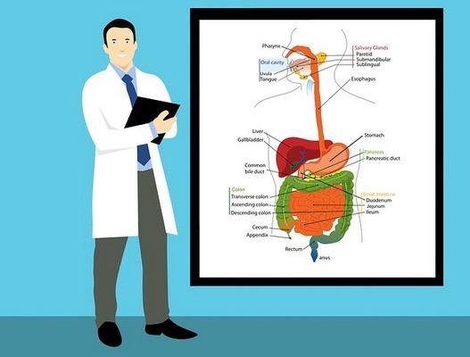 Біль у спині може бути першою ознакою раку підшлункової залози: експерт